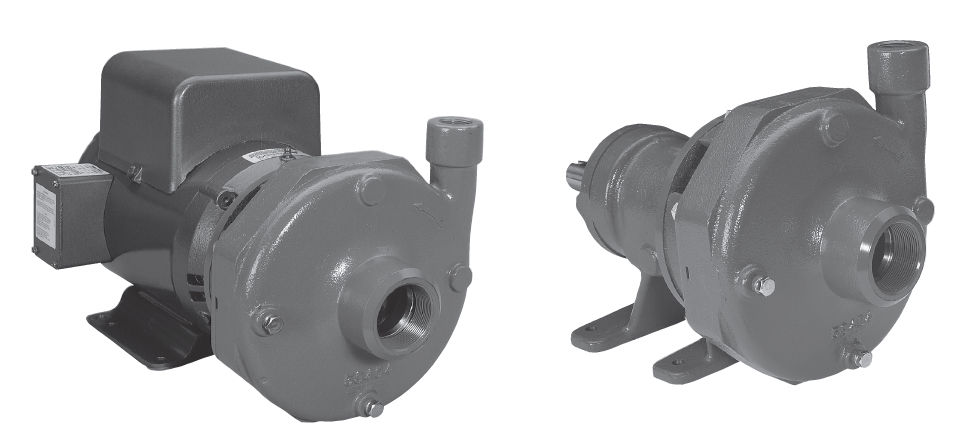Goulds 7BF2H2C9 Centrifugal Pump at Sears.com